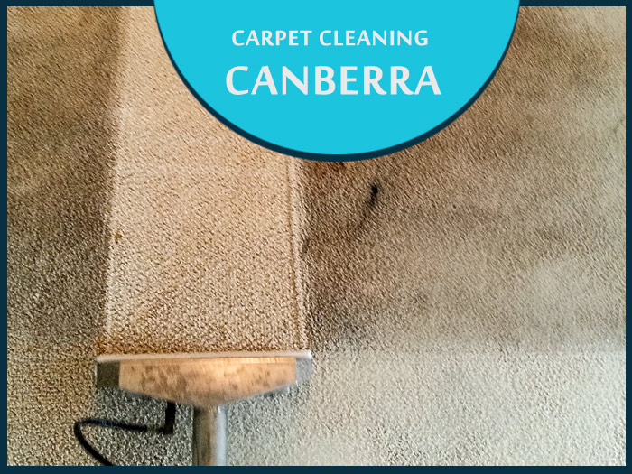 Carpet Cleaning Springrange