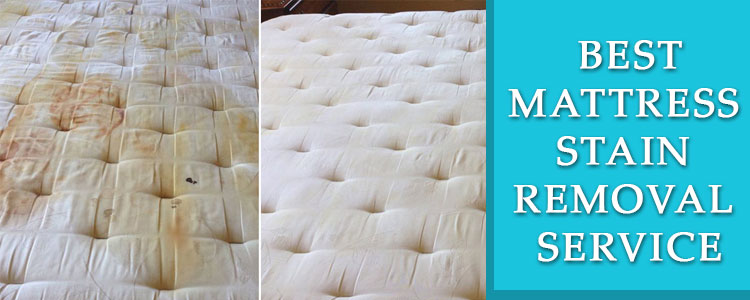 Mattress Stain Removal Service Alphington