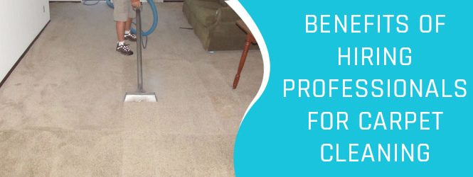 Best carpet cleaners in Canberra