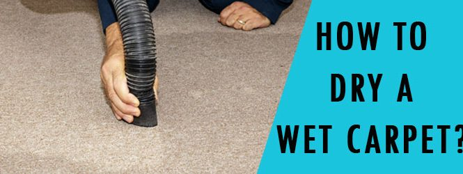 How to Dry a Wet Carpet?