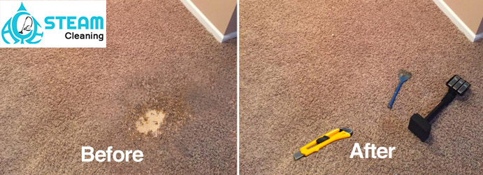 Carpet Repair Damage